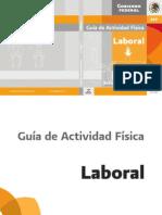 Guía de Actividad Física Laboral