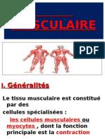 06 - Tissu Musculairec