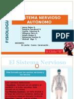 Sistema Nervioso Autonomo