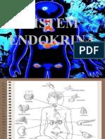 T1 Sistem Endokrina