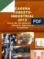 Caden a Forestal