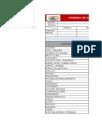 Formato de Inspeccion de Maquinaria Pesada