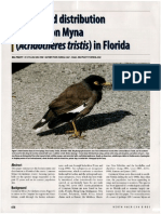 Common Myna status and distribution in Florida