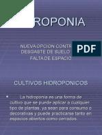HIDROPONIA DIAPOSITIVAS[1]