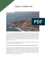 Aspectos geológicos y fosilíferos del Morro.docx