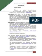 Aeropuerto AEROPUERTO (1).docx(1)