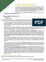 responsabilidad patrimonial5.pdf