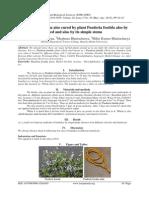 I010244345.pdf