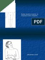 1. Ex. Clinic in Ortopedie