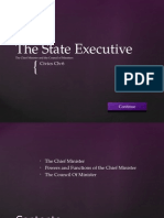 The State Executive (the Chief Minister and the Council of Ministers)