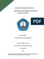 TUGAS petrografi fix.docx