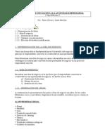 Proyecto de Iniciación a La Actividad Empresarial__1