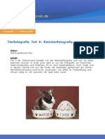 Tutorial Tierfotografie Teil 9 Kleintierfotografie