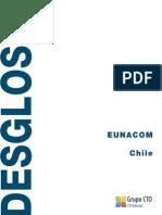 ed_dsg_chile_12-13.pdf