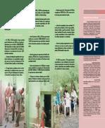brochure IDDI esp. 2.pdf