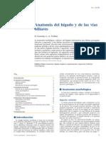 Anatomía Del Hígado y de Las Vías Biliares