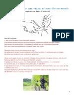 Fiche Bible 123 Jésus est comme une vigne.pdf