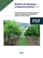 Vinhedos Cultivados Sob Cobertura Plastica Na Serra Gaucha