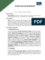 Estructura Plan de Negocio (1)