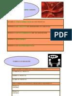 Plan Till As de Ayudas Para Los Proyectos