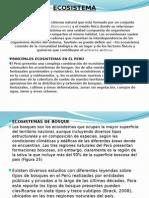 Exposicion de Economia y Realidad Peruana