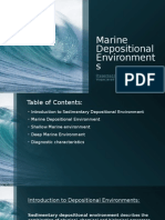 Marine Sedimentary Depositional Envorinments