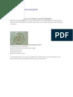 onmipoliedro omnipoliedro
