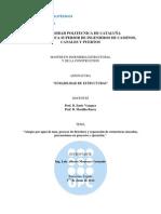 Trabajo Final de Durabilidad de Estructuras, Luis Montoya