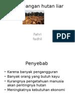 Penebangan Hutan Liar