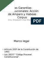 Las Garantías Constitucionales I
