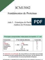 Estrategias Purificacao Analises Proteínas