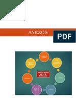 Anexos pip_educacion.docx