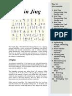 Yijin_Jing_article.pdf