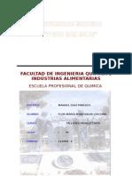 Conserva de Ciruelas - Facultad de Ingenieria Quimica