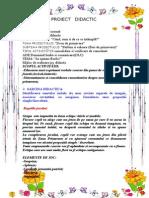 Proiect Didactic Gradinita