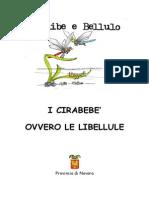 Libellule Cirabebe