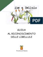 Libellule Guida