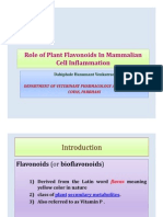 Role of Plant Flavonoids In Mammalian Cell Inflammation.pdf