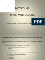 Biotipoligii Tipuri Morfologice