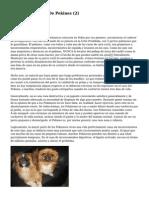 Article   Cachorros De Pekines (2)