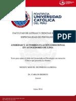 Miguel de Priego Llerena Wendy Ansiedad Autorregulacion
