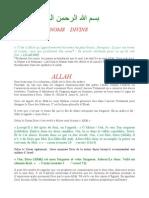 LES   NOMS    DIVINS.pdf