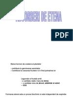 Etena+CO2-curs4-2012