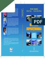 Anastasiu Popa Roban (2007)_ Sisteme Depozitionale