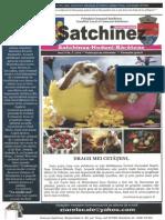 Jurnalul de Satchinez Martie 2015