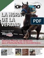 PURO HIPISMO N° 56-2015