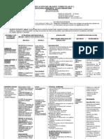 6 BLOQUES CURRICULARES.QQBB.doc