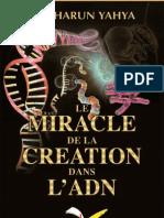 Le Miracle De La Creation Dans L'adn