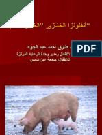 Tarik Abd Gawad انفلوانزا الخنازير