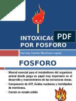 Intoxicacion Por Fosforo !!